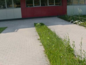 Благоустройство территории в Липецке